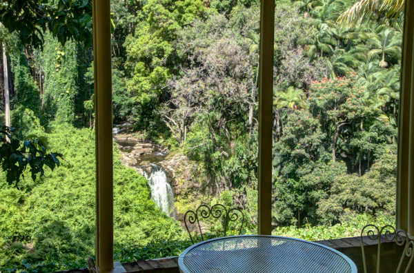 honomu mature singles Residential property for sale in honomu,hi (mls #615344) learn more from oceanfront sotheby's international realty flag driveway and mature.